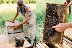 The People Who Feed Us, Beekeeper Mary Woltz 1