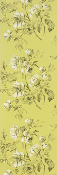 Designers Guild -     nabucco wallcoverings Part Number     P540/06 name     watelet chartreuse Composition     NON-WOVEN wallpaper Width     52 cm Weight     150 g/m2 Horizontal Pattern Repeat     0 cm Vertical Pattern Repeat     64 cm