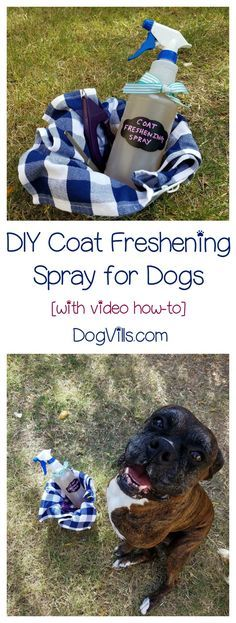 Here's an easy dog DIY for you! Get rid of stinky fur with this coat freshening spray! Works on all your dog stuff too!