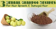 3 Herbal Shampoo Recipes For Hair Growth & Damaged Hair  Read the article here - http://www.blackhairinformation.com/hair-care-2/hair-treatments-and-recipes/3-herbal-shampoo-recipes-hair-growth-damaged-hair/
