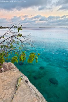 Diving in the gorgeous waters of Bonaire