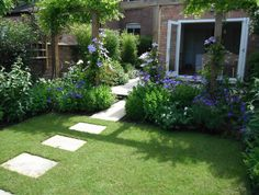 Borders between lawn and patio
