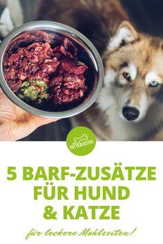 Heute möchte ich dir 5 wirkungsvolle, natürliche Zusätze vorstellen, mit denen du die BARF-Mahlzeiten deines Lieblings noch gesünder und schmackhafter gestalten kannst! Einige der folgenden Zutaten hast du vielleicht bereits in deiner Küche, ohne dir über ihre Einsatzmöglichkeiten in der BARF-Fütterung bewusst zu sein. Manche sind wiederum ganz besondere Wundermittel, die ich mit großer Sorgfalt recherchiert und in mein Futterkisterl-Sortiment aufgenommen haben. Dog Food Recipes, Blog, Natural Dog Food, Cats, Animal Food, Meals