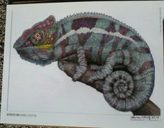 17 Best Intricate Ink Animals In Detail Coloring Book By Tim Jeffs