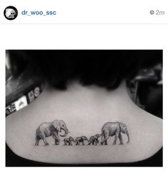 Family tattoo. Elephants. Dr woo.