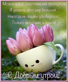Morning Quotes, Beautiful Day, Good Morning, Romantic, Messages, Words, Live, Comic, Wisdom