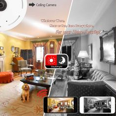Panoramic Security-Camera  360 Degree Panoramic Network Cameras Video's or Virtual Reality Experiences for Capturing Your Surroundings Keep Your Pet & Home Safe in 2017–Panoramic Fish-Eye Camera Reviewed, No Matter Your Budget------Buyer's Guide http://www.lightcoowoo.com/Panoramic-Network-ip-Cameras