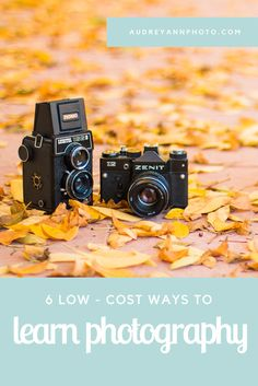 6 Low-Cost Ways to Learn Photography | Photography Tips