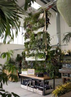 Vertical Gardening Ideas - Bing Images