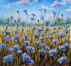campos de flores: Campo de flor. Flores azules en prado. Cielo azul. Pintura al óleo.