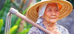 Our team of researchers visited five places around the world where people live the longest to distill their secrets of healthy longevity. People in the Blue Zones nurture strong social networks, consume a plant-based diet, eat in moderation and incorporate daily, natural physical activity into their lives.