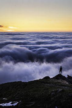 Sea of clouds - The Allgäu Alps, Bavaria, Germany  (by Alex Fuchs on 500px)
