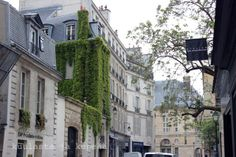 Rue du Seine, Paris. Paris, Blog, Pictures, Photos, Montmartre Paris, Photo Illustration, Paris France, Resim