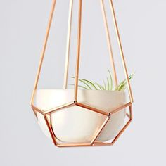 This pentagon copper planter by @morrisonmakers is such a perfect home for your air plants . . . . . #planter #copper #handmade #madebyhand #handmadehome #shopsmall #shoplocal #smallbusiness #supportsmallbusiness #localbusinesses #createorcredit #slowliving #theartofslowliving #aquitestyle #seekthesimplicity #livesimply #livethelittlethings #thatsdarling #morningslikethese #thesimplethings #thelittlethings #verilymoments #nothingisordinary #thehappynow #simpleandstill #homedecor #homedeco...