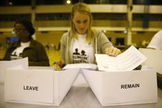 Critics claim British voters were unqualified to decide such a complicated issue. But democracy itself isn't the problem.