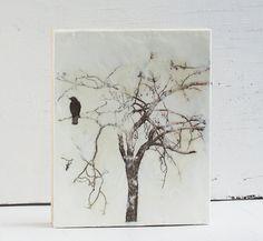 Susan Najarian encaustic painting & mixed media by susannajarian