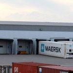 #El año pasado se exportaron 108.190 toneladas de merluza - El Diario de Madryn: El Diario de Madryn El año pasado se exportaron 108.190…