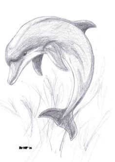 Animal Drawings Images For > Pencil Drawings Of Dolphins Art Drawings Sketches Simple, Animal Sketches, Pencil Art Drawings, Animal Drawings, Easy Drawings, Drawing Ideas, Pencil Drawing Tutorials, Dolphin Drawing, Art Du Croquis