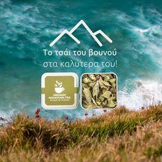 Cooking Herbs, Greek Dishes, Organic Herbs, Medicinal Plants, Herbal Tea, Stay Safe, Health And Wellness, Herbalism, Greece
