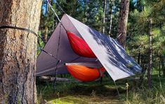 THE Ultimate Guide to Hammock Camping Camping Hammock Tent, Eno Hammock, Outdoor Camping, Hammock Ideas, Glamping, Outdoor Gear, Diy Tent, Hammock Stand, Camping For Beginners