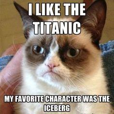 Grumpy kitty loves the Titanic