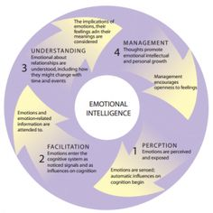 THE EFFECTIVE LEADER: UNDERSTANDING AND APPLYING EMOTIONAL INTELLIGENCE •