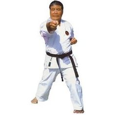 Goju Ryu Karate 24 DVD Set by Higaonna