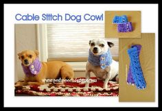 Posh Pooch Designs Dog Clothes: Cable Stitch Dog Cowl With Buttons Free Crochet Pattern