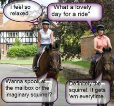 and i bet thats exactly what goes through some horses minds