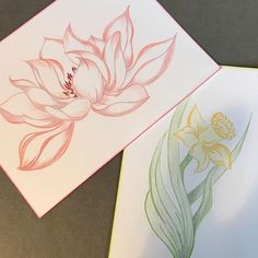 Instagram photo by spoiledrottendesigns - New flowered cards coming soon....finished drawings and colouring....#handmade  #cards #quilled #quilling #quillwork #quilledart #quillingpaper #quillingcreations #quillingflower #quillingartist #drawings #sketches #designs #paper #art #artist #twirlingpaper #twirling #flower #anytimecard