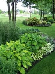 Image result for hosta garden layout ideas