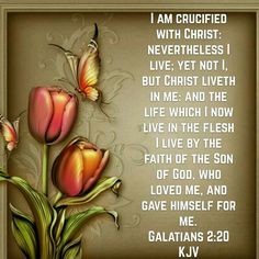 Galatians 2:20 (KJV)...