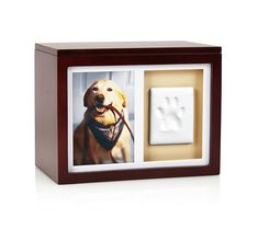 Pearhead Dog Or Cat Paw Prints Pet Memory Box With Clay Imprint Kit, Perfect Pet Memorial Espresso ^^ Can't believe it's available, see it now : Dog Memorials