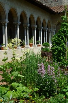 The Cloisters - Medieval Garden | The Cloisters, in Fort Tryon Park, is a branch of the Metropolitan Museum of Art, NYC. . Not to miss.