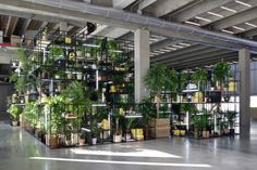 Rashid Johnson, Within Our Gates, Garage Museum of Contemporary Art.COURTESY GARAGE MUSEUM OF CONTEMPORARY ART