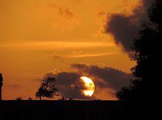 Sunset over Sunkist