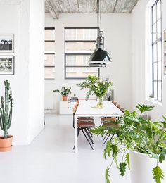 "12 Likes, 1 Comments - class room LA (@classroomla) on Instagram: ""soften up your industrial space with plants plants plants // fabulous loft design featured on…"""