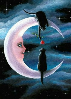 gatti sulla Luna