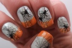 Spider Pictures, Photos, Images, and Pics for Facebook, Tumblr ...