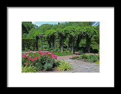 toledo, ohio, botanical garden, landscape, nature, pergola, flowers, michiale schneider photography, interior design, decor