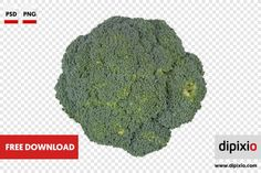 Free photo of fresh broccoli for download on www.dipixio.com #dipixio #freephoto #freebie #free #photo #freedownload #stockphotos #photography #graphics #photos #blog #blogger #pic #freeimages #stock