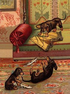 Dachshund Charming Dog Greetings Note Card Cute Dogs Play With Ladies Corse #dachshund Charming Dog Greetings Note Card Cute Dogs Play With Ladies Corset