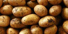 Aardappels moeten altijd zo lang koken. Gelukkig bestaan er trucjes waardoor je sneller van je piepers kunt gaan genieten. Gedeeltelijk garen in de magnetron Aardappels volledig in de magnetron koken, raden we niet aan. De kooktijd is namelijk moeilijk in te schatten. Maar je kunt ze wel al gedeeltelijk garen in de magnetron. Hierdoor kun…