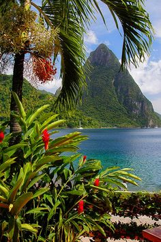 St Lucia, Island in the Caribbean. Oh how I would love to have a second home in the Caribbean! Best Places To Travel, Places To See, Places Around The World, Travel Around The World, Dream Vacations, Vacation Spots, Vacation Travel, Travel Destinations, Beautiful World