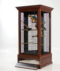 Do it yourself parrot/bird cage!