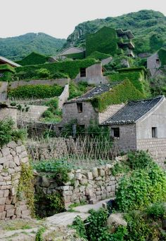 In the mouth of the Yangtze River off the eastern coast of China, a small island holds a secret haven lost to the forces of time and nature–an abandoned fi