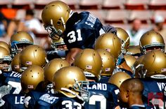 Notre Dame Football at Hawaii Bowl 2008 > Notre Dame Football Helmets Go Irish, Notre Dame Football, Fighting Irish, Football Helmets, Seasons, Digital, Image, Hawaii, Marketing