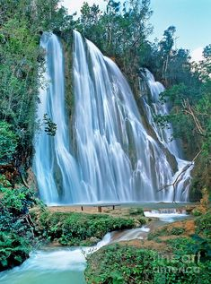 ✮ El Salto del Limón is found in the northeast Dominican Republic on the peninsula of Samaná