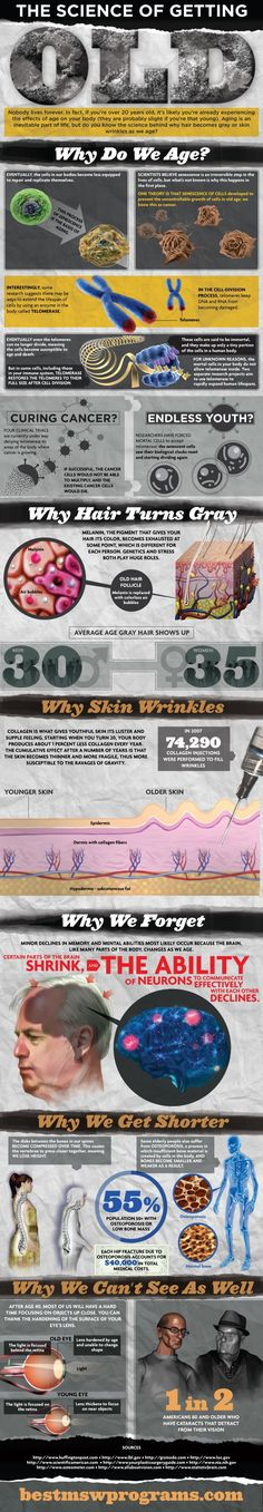 The Science of Getting Old Infographic. In the cell-division process, telomeres keep DNA and RNA from becoming damaged. If you're in your 30's, chances are you're getting grey hair. This is due to the wearing out of melanin in the body. Your body also starts slowing down its process of creating collagen, which leads to wrinkles. From the time you're 20, your body creates 1% less collagen every year. In 2007, 174,290 collagen injections were given to those striving to reduce wrinkles.