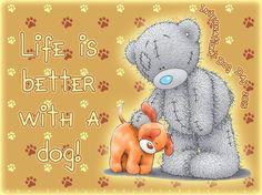 Happy International Dog Day